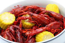 picture of crawdads  - boiled crawfish clayfish party - JPG
