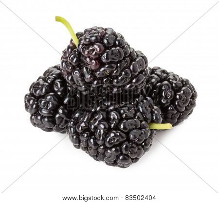 Black Mulberry Isolated On The White Background