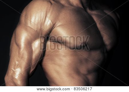 Body Of Muscular Man
