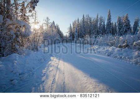 Winter road in sunny day