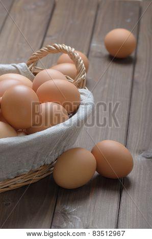 Lot Of Chicken Eggs