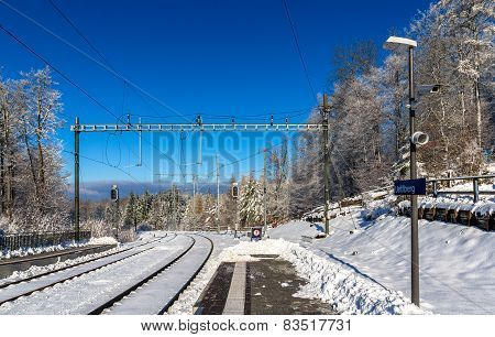 Zurich S-bahn On Uetliberg Mountain - Switzerland