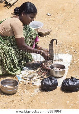 Woman Cleans And Cuts Fish.