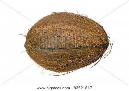 Walnut Coconut