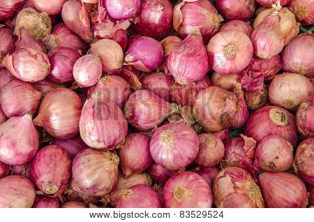 Pile Of Onions, Shallot Is Ingredient Of Thai Food And Catchup