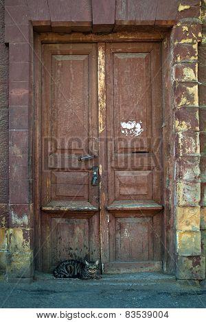 Cat Sitting At The Old, Dark Wooden Door