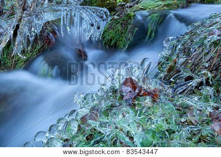Icicle On Grass By Winter River