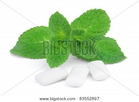 Mint and chewing gum