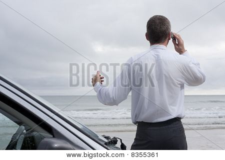 Businessman Talking On Cell Phone At The Sea