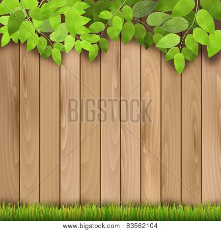 Wooden Fence, Grass And Tree Branch