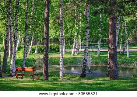 Relax Place Near Pond In Summer Park