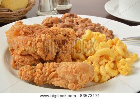Chicken Dinner Closeup