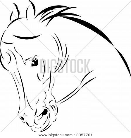 Vector tattoo style horse head.
