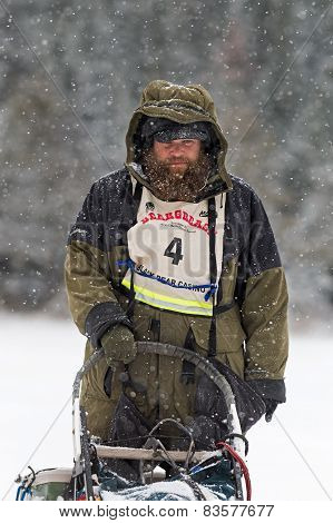 Beargrease 2015 Marathon Peter Mcclelland