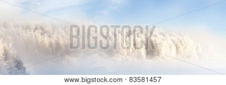 Winter landscape, captured in Finland 3x1 Ratio