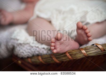 Close Up Of Tiny Baby Feet. Toes. Horizontal Photo. Macro.