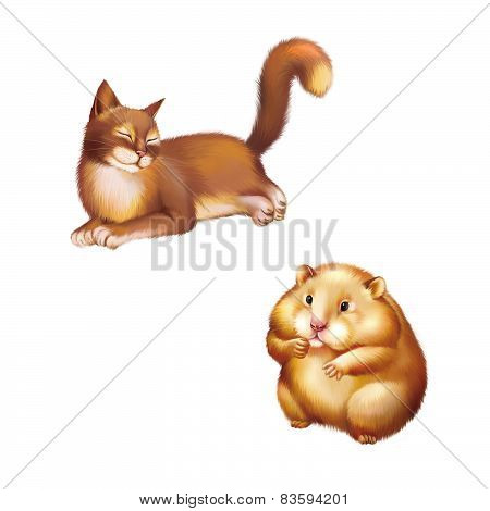 Cute red Hamster sitting, Isolated on white, Young Red brown Cat laying, Rest.