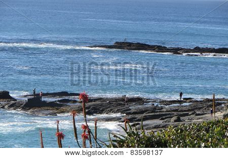Laguna Ocean View of Tidepools