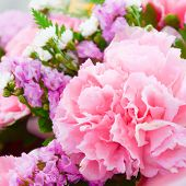 stock photo of carnation  - Pink carnations in the basket with the morning light - JPG