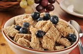 stock photo of whole-wheat  - A bowl of whole wheat breakfast cereal with blueberries - JPG