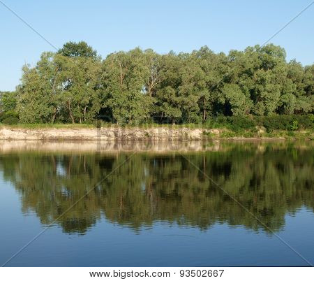 Trees Water Reflection