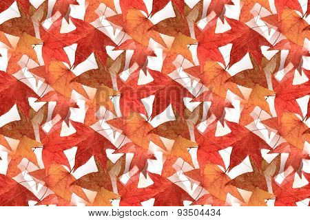 Seamless Maple Leaf Design 1