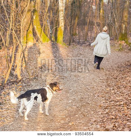 Woman walking her mixed bred dog.