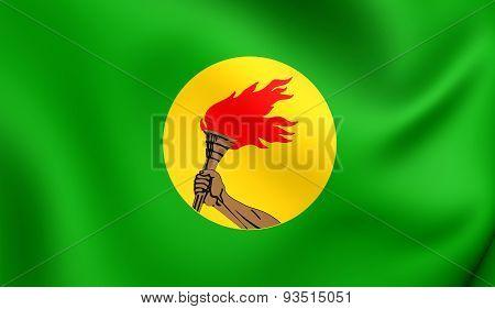 Republic Of Zaire 3D Flag (1971-1997)