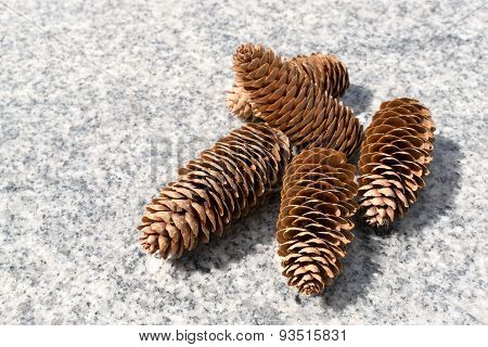 Pine Cones On Marble