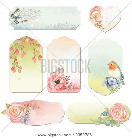 Collection holidays labels with watercolor design elements, butterfly, bird Robin and flowers, vector illustration in vintage style.