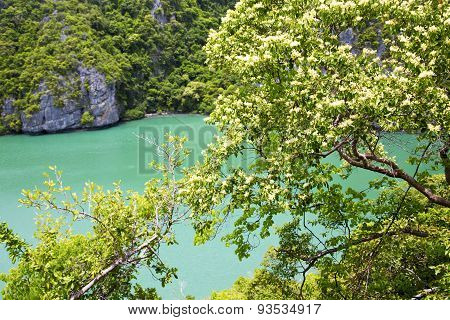Kho Tao Bay Abstract  Green Lagoon And Water