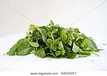Bundle of fresh mint