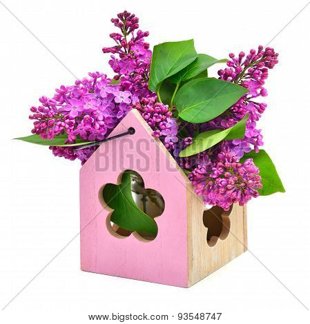 Lilac Flower In Decoration Box Isolated
