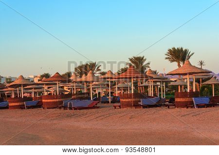 Parasols and sunbeds on the Red Sea