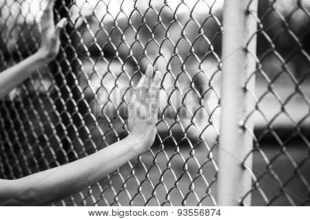 Hand Holding On Chain Link Fence, Black And White Concept