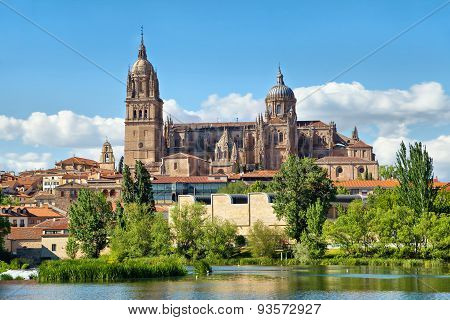 New Cathedral In Salamanca - View From River Side