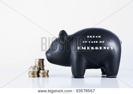 Piggy Bank Break In Case Of Emergency
