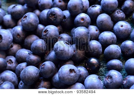 Fresh Picked Organic Blueberries