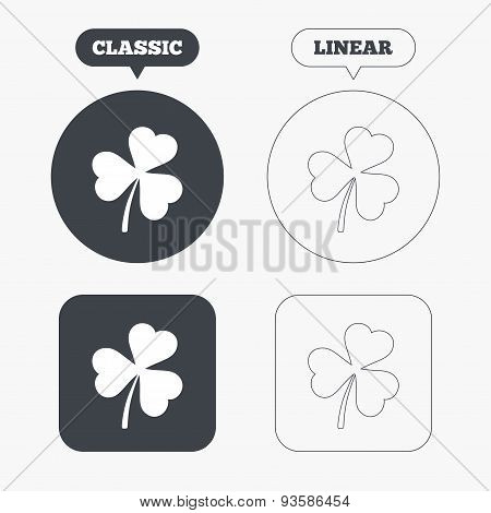 Clover with three leaves sign. St.Patrick symbol