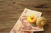 stock photo of conch  - Yellow rubber duck conch with money of Thai Bath - JPG