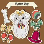 picture of toy dogs  - Vector hipster maltese dog with a dog with a set of toys - JPG