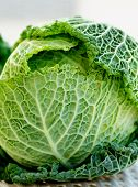 pic of leafy  - Green Leafy Texture Head of Savoy Cabbage closeup on Blurred background - JPG