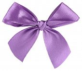 picture of bow tie hair  - Violet ribbon bow tie - JPG