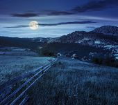 stock photo of conifers  - composite rural landscape - JPG