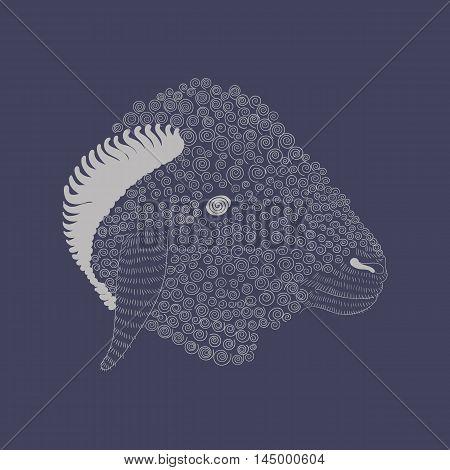 pets, mammal, lamb, white, wool, line, vector, fur