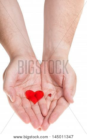 Two Red Hearts On Male Palms Isolated On White