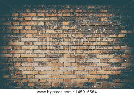 Old brick wall background and texture, close up