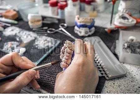 Dental Technician Applying Ceramics