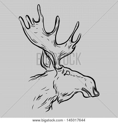 Elk, Deer Mascot Head.Elk Head Animal Symbol.Engrave isolated vector.Hand Drawn Graphic.Isolated on gray background.Great for Badge Label Sign Icon Logo.Design.Quality Elk, Deer Emblem.