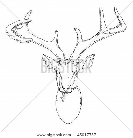 Deer Mascot Head.Deer Head Animal Symbol.Engrave isolated vector.Hand Drawn Graphic.Isolated on white background.Great for Badge Label Sign Icon Logo Design.Quality Emblem.